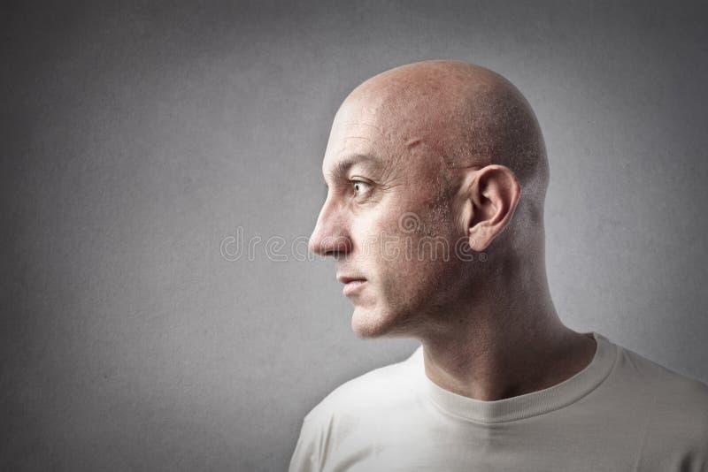 Profilo calvo dell'uomo immagine stock