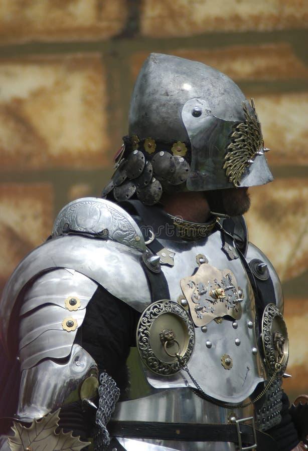 Profilo del cavaliere immagini stock