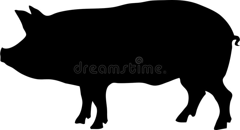 Profilo del maiale royalty illustrazione gratis