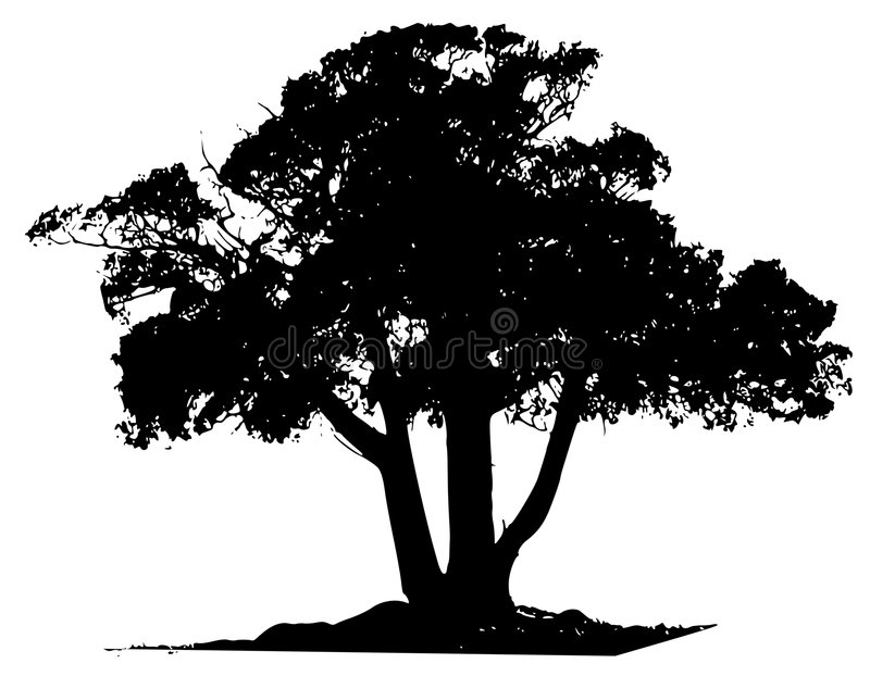 Profilo del nero dell'albero di vettore   royalty illustrazione gratis