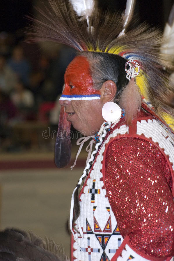 Profilo dell'nativo americano immagine stock
