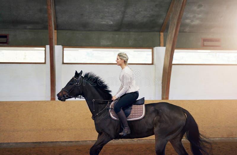 Profilo di una donna su un cavallo immagini stock libere da diritti
