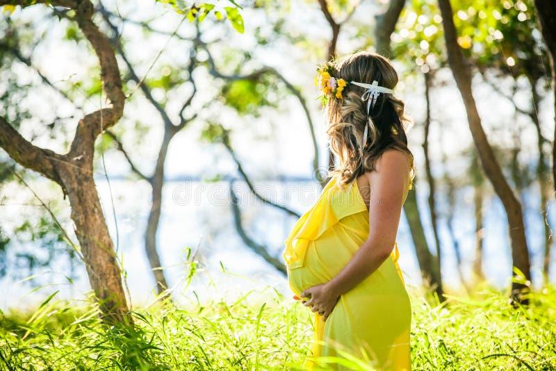 Profilsikt av gravida kvinnan med långt hår i gul klänning fotografering för bildbyråer
