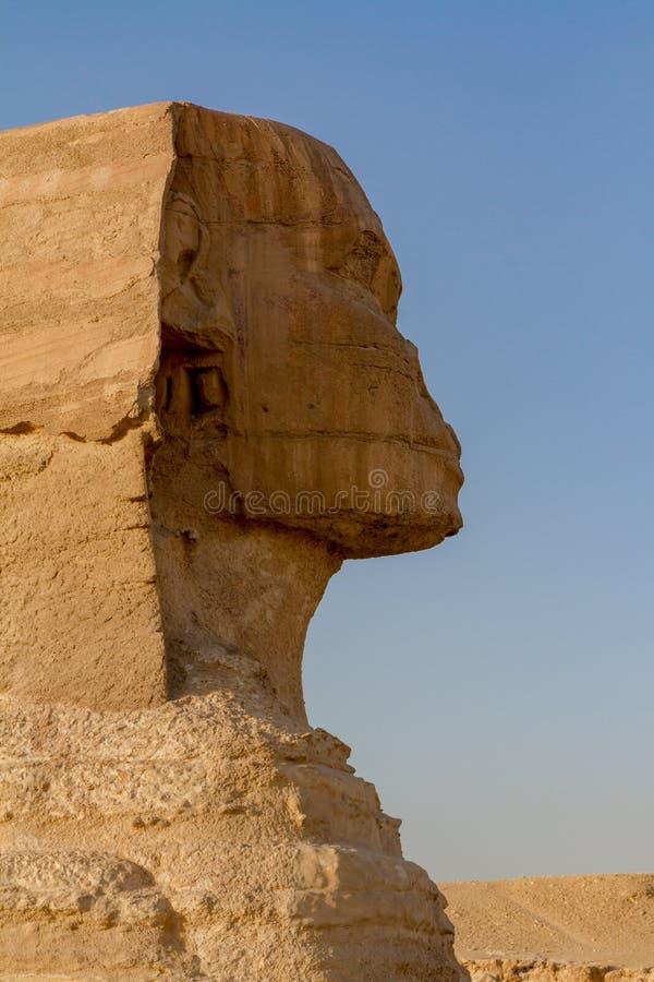 Profilsikt av huvudet av den stora sfinxen på det Giza pyramidkomplexet, Giza, Egypten royaltyfri bild