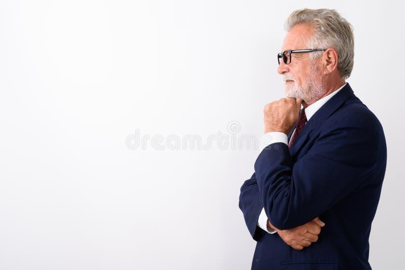Profilsikten av den stiliga pensionären uppsökte tänkande whi för affärsman royaltyfria foton