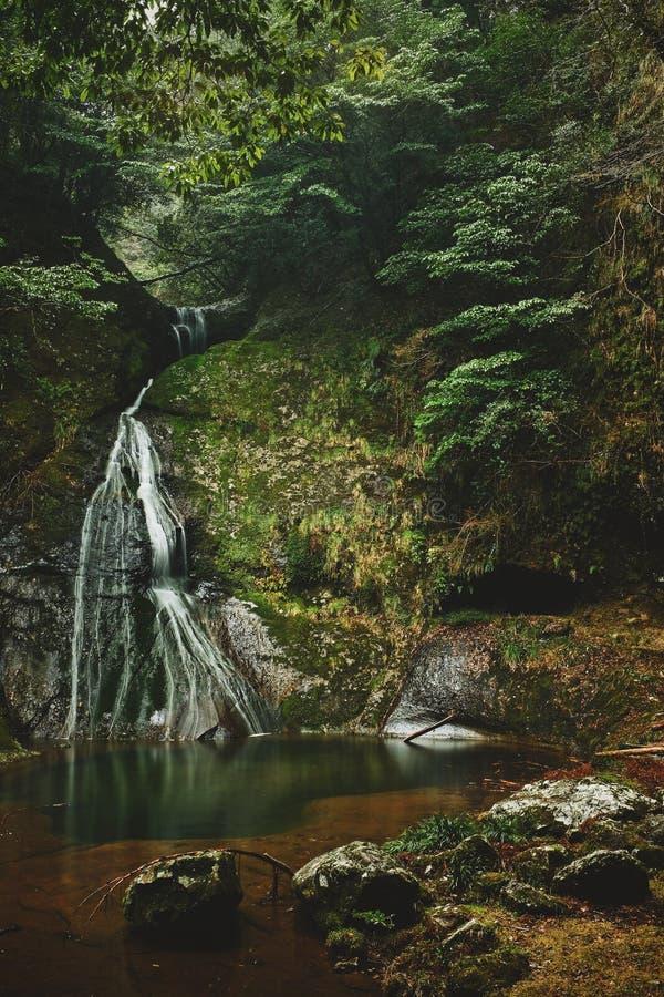 Profondément dans les montagnes du Japon images stock