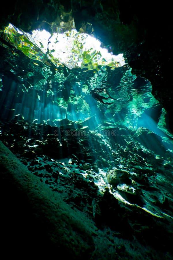 Profond à l'intérieur du cenote photographie stock
