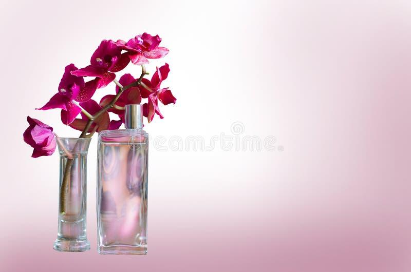 Profumo della donna in bella bottiglia ed in orchidea rosa isolate su fondo bianco fotografie stock