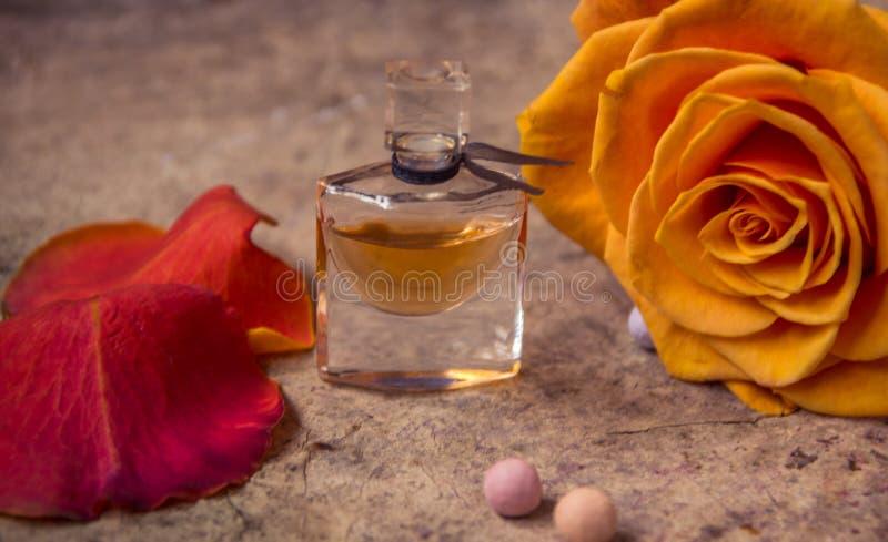 Profumo in una bottiglia di vetro ed in un fiore rosa dell'arancia immagini stock
