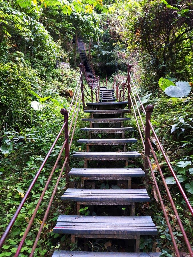 Profundamente en Taroko - el rastro con las escaleras muy altas foto de archivo