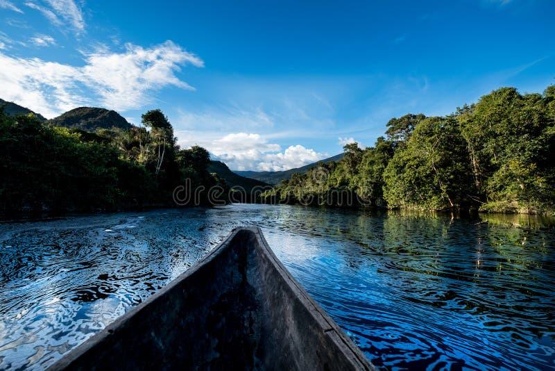 Profundamente na selva das Amazonas imagens de stock