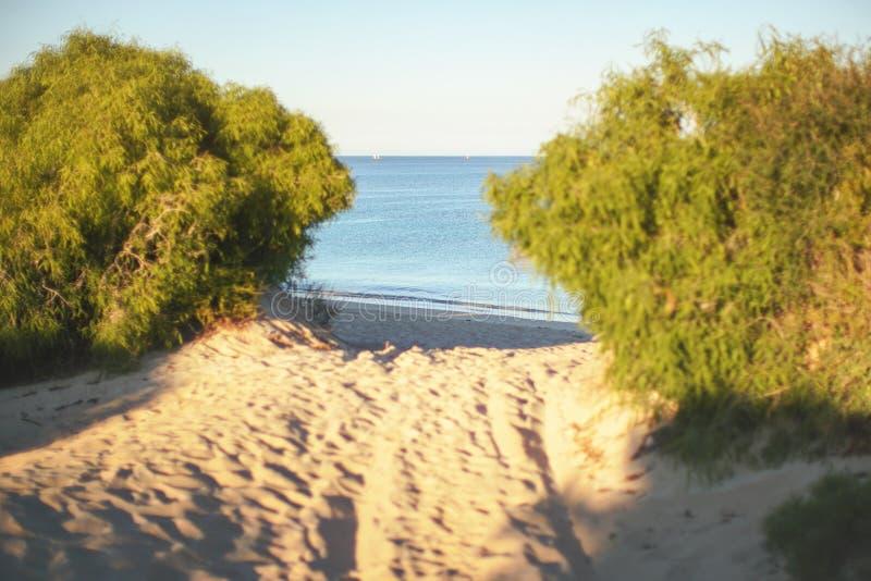 Profundidade rasa da foto do campo - somente a praia e o mar no foco, trajeto arenoso que conduz à água, sol da tarde brilham no  fotos de stock royalty free