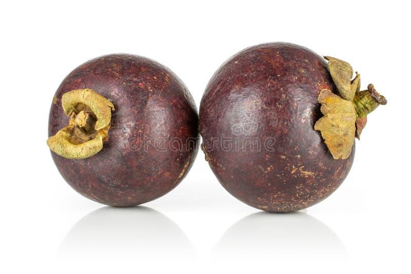 Profundo - mangustão roxo isolado no branco fotografia de stock royalty free