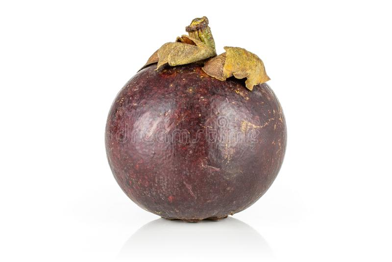 Profundo - mangustão roxo isolado no branco imagem de stock royalty free