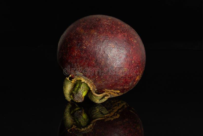 Profundo - mangustão roxo isolado no vidro preto fotografia de stock royalty free