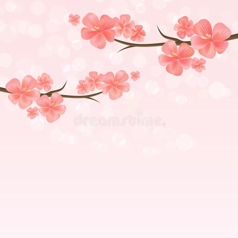 Progettazione dei fiori Fiori di Sakura Ramo di sakura con i fiori Ramo del fiore di ciliegia sul fondo rosa del bokeh Vettore royalty illustrazione gratis