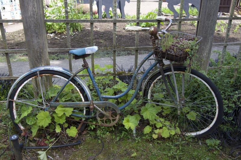 Progettazione del giardino riciclata fotografia stock