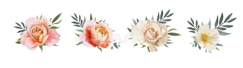 Progettazione del mazzo floreale di vettore: pesca di rosa di giardino, cremoso, pallido o illustrazione di stock