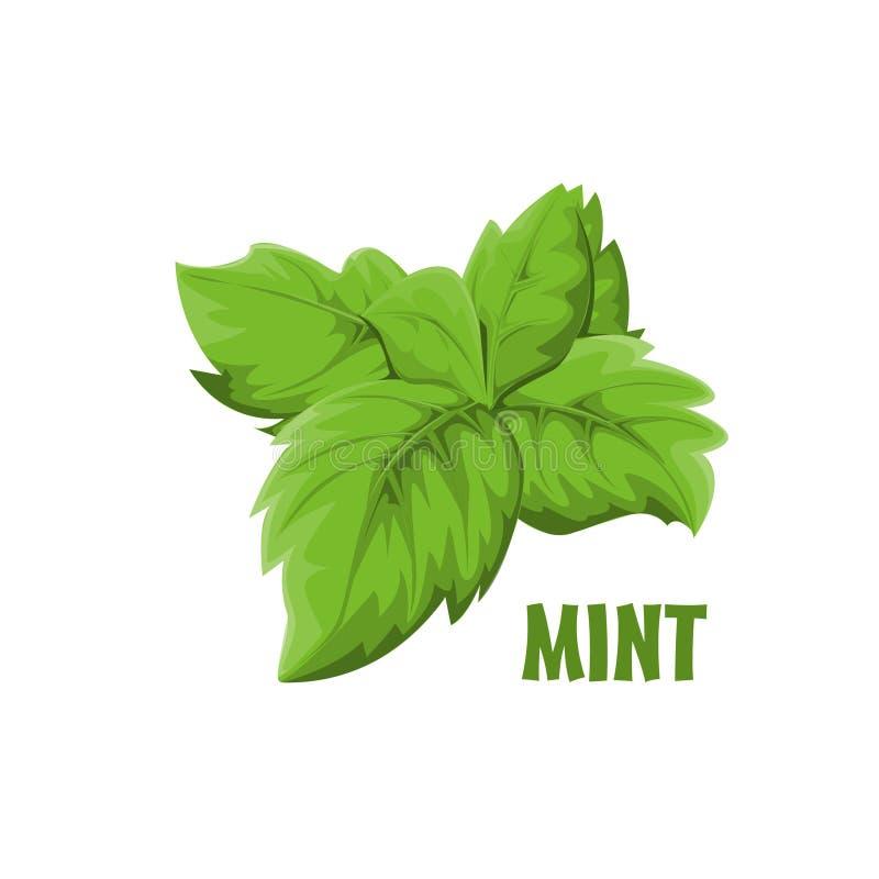 Progettazione dell'azienda agricola di Logo Mint fotografia stock libera da diritti