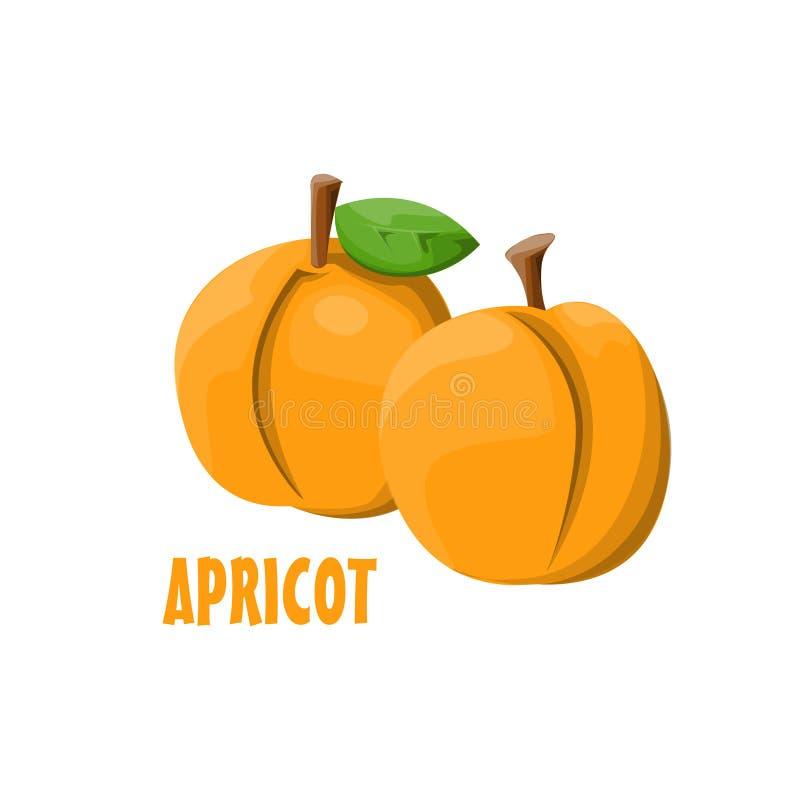 Progettazione dell'azienda agricola di vettore di Logo Apricot fotografia stock libera da diritti