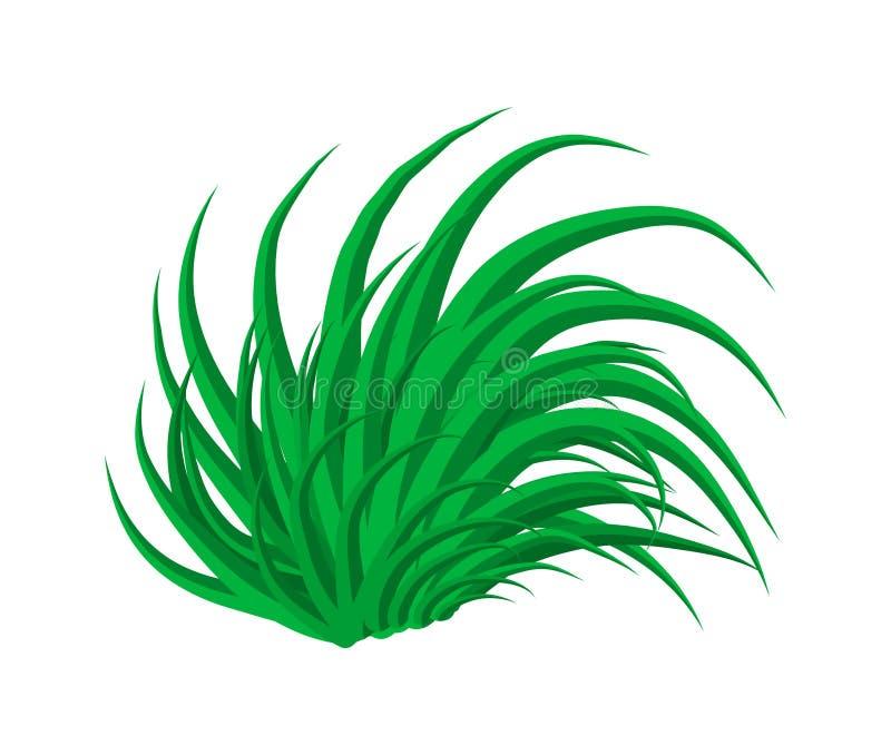 Progettazione dell'icona di simbolo di vettore dell'erba Bella illustrazione isolata illustrazione di stock