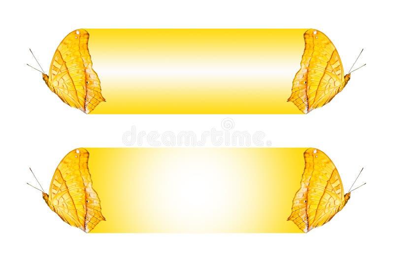 Progettazione della casella di testo con la farfalla il erotella di dejone di Vindula dell'incrociatore, isolato su bianco illustrazione vettoriale