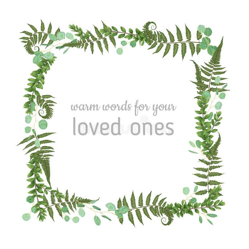 Progettazione di carta floreale di vettore La foresta verde della felce lascia le erbe, eucal illustrazione di stock