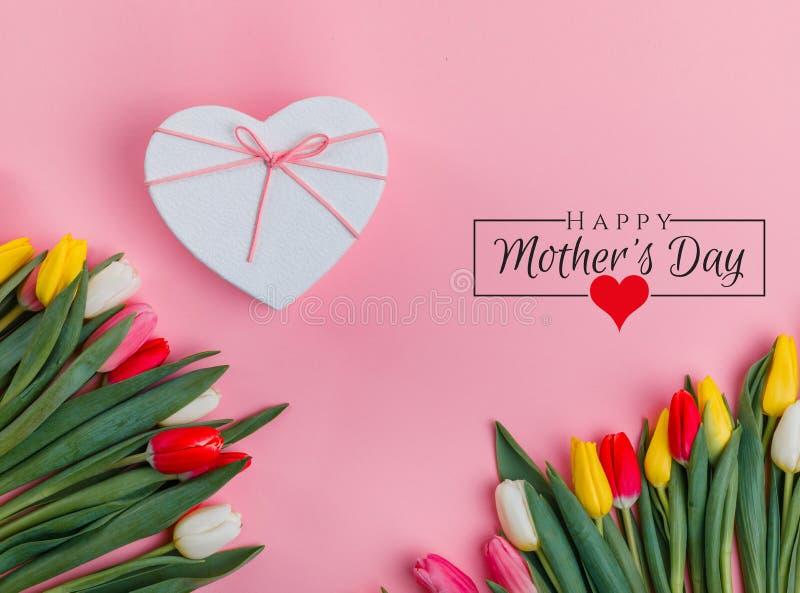 Progettazione di Giornata internazionale della donna l'8 marzo Fiori dei tulipani su fondo immagini stock libere da diritti