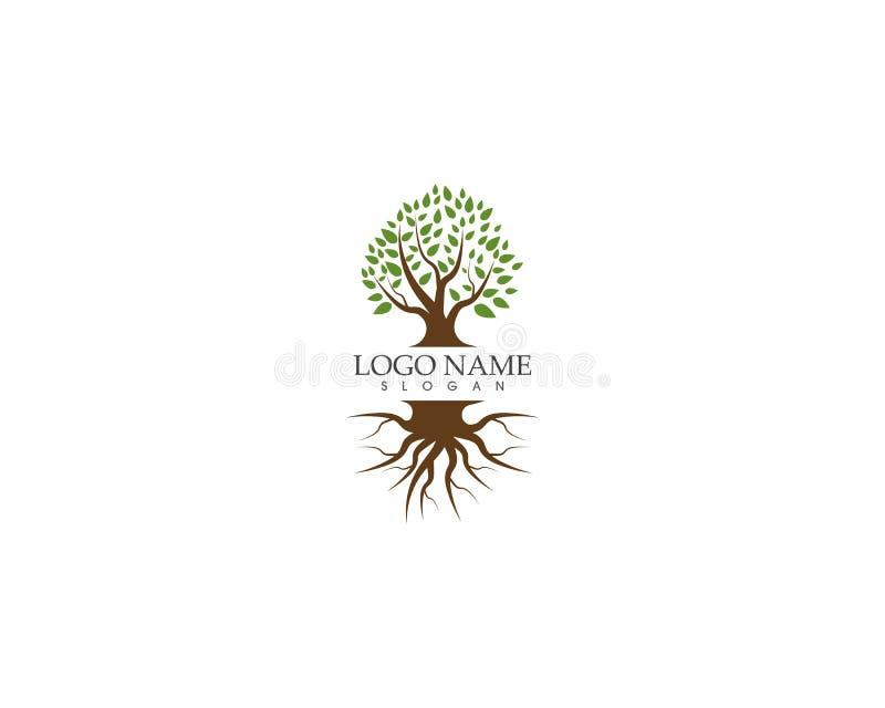 Progettazione di logo dell'icona dell'albero illustrazione vettoriale