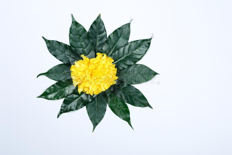 Progettazione di rangoli del fiore del tagete per il festival di Diwali, decorazione indiana del fiore di festival immagini stock libere da diritti