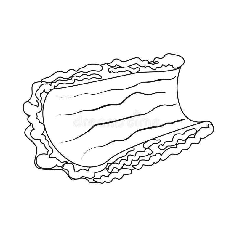 Progettazione di vettore dell'icona del pezzo e della corteccia Raccolta dell'icona di vettore del legname e della corteccia per  illustrazione vettoriale