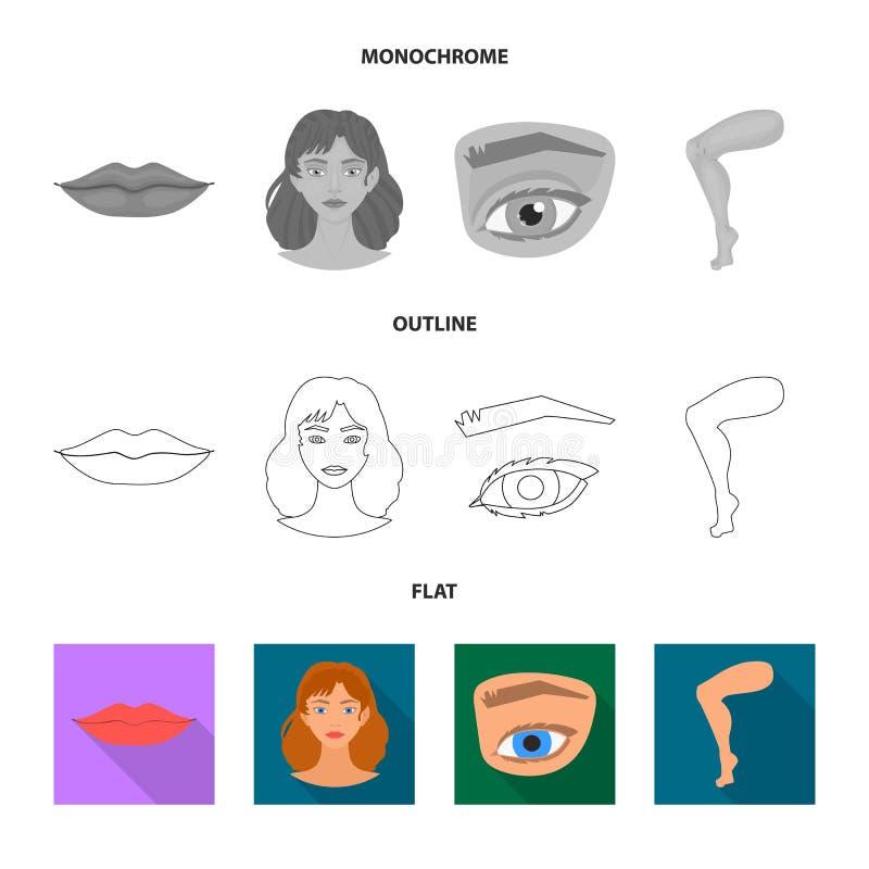 Progettazione di vettore dell'icona della parte e del corpo Raccolta del simbolo di riserva di anatomia e del corpo per il web illustrazione vettoriale