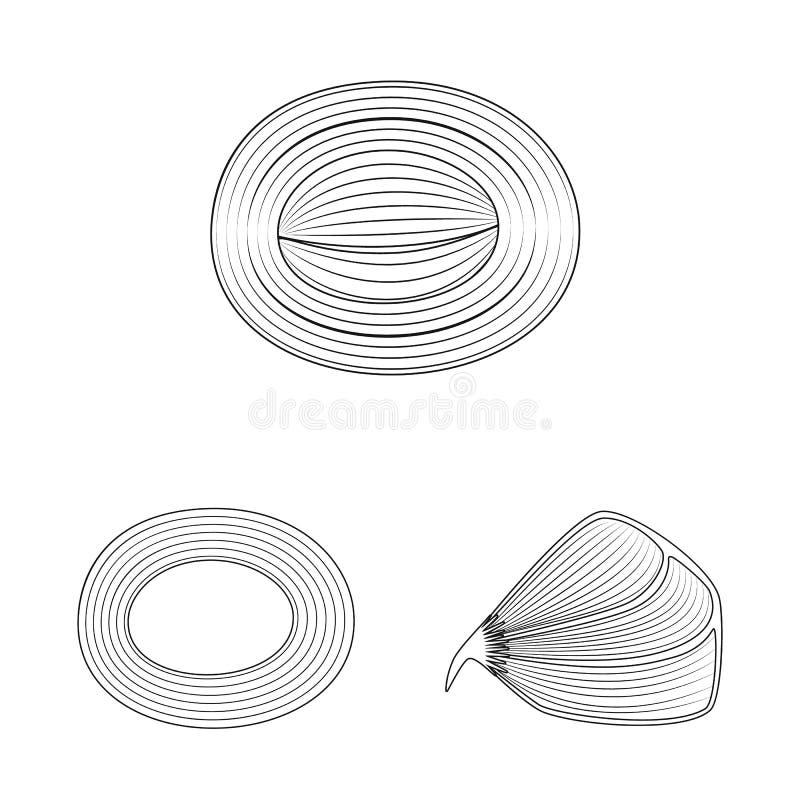 Progettazione di vettore di fibra e del logo muscolare Raccolta dell'illustrazione di vettore delle azione del corpo e della fibr illustrazione di stock