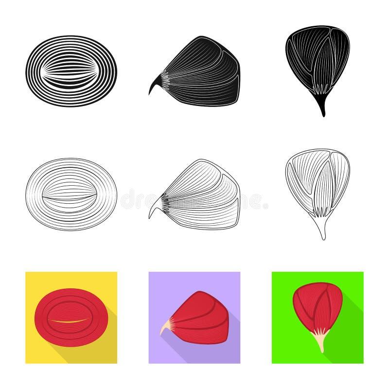 Progettazione di vettore di fibra e del logo muscolare Raccolta del simbolo di riserva del corpo e della fibra per il web illustrazione di stock