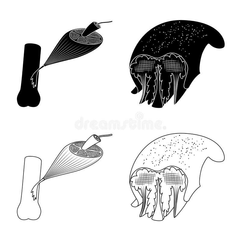 Progettazione di vettore di fibra e dell'icona muscolare Metta dell'icona di vettore del corpo e della fibra per le azione royalty illustrazione gratis