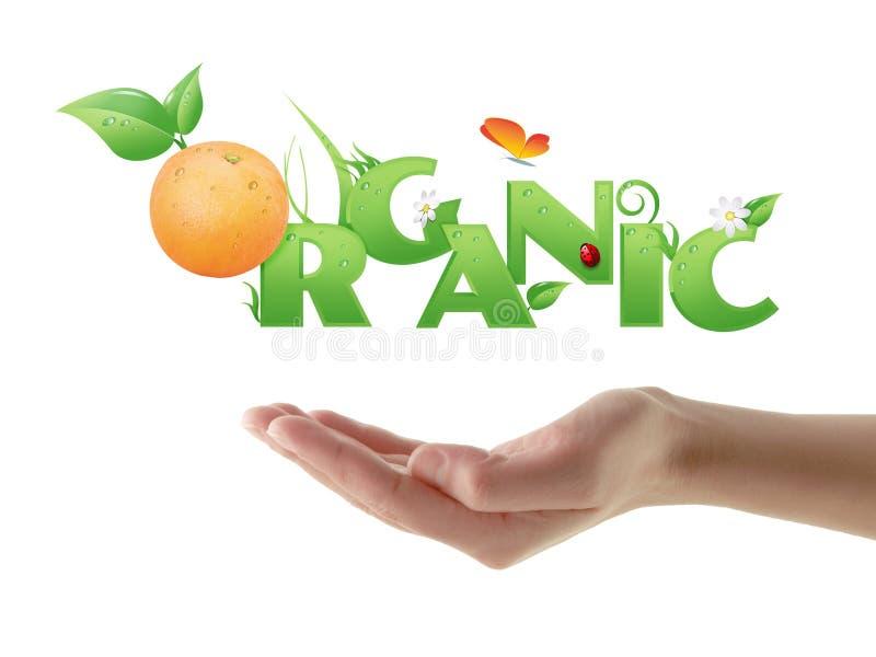 Progettazione ecologica organica di parola della tenuta della mano illustrazione vettoriale
