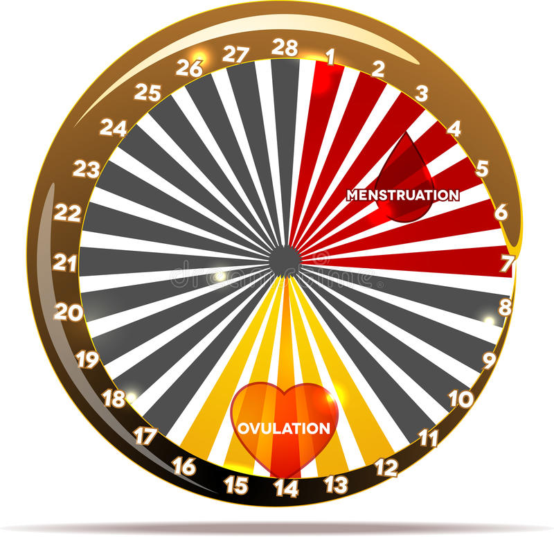 Progettazione femminile dell'estratto del ciclo mestruale illustrazione di stock