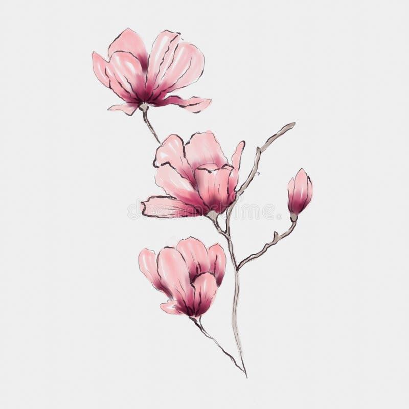 Progettazione floreale dell'acquerello illustrazione vettoriale