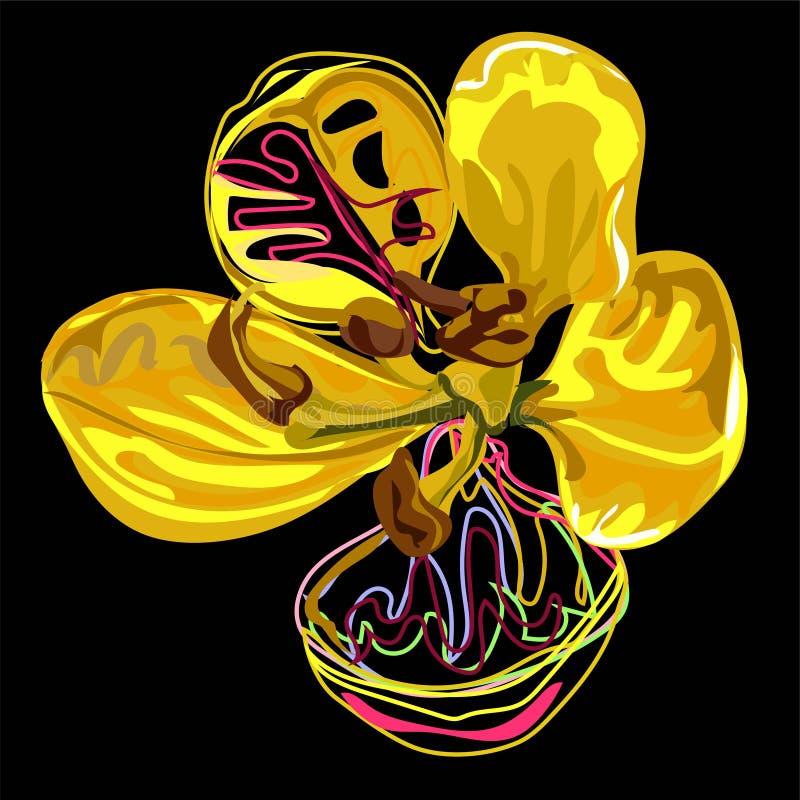 Progettazione grafica, fiore della cassia nello stile astratto su fondo nero illustrazione di stock