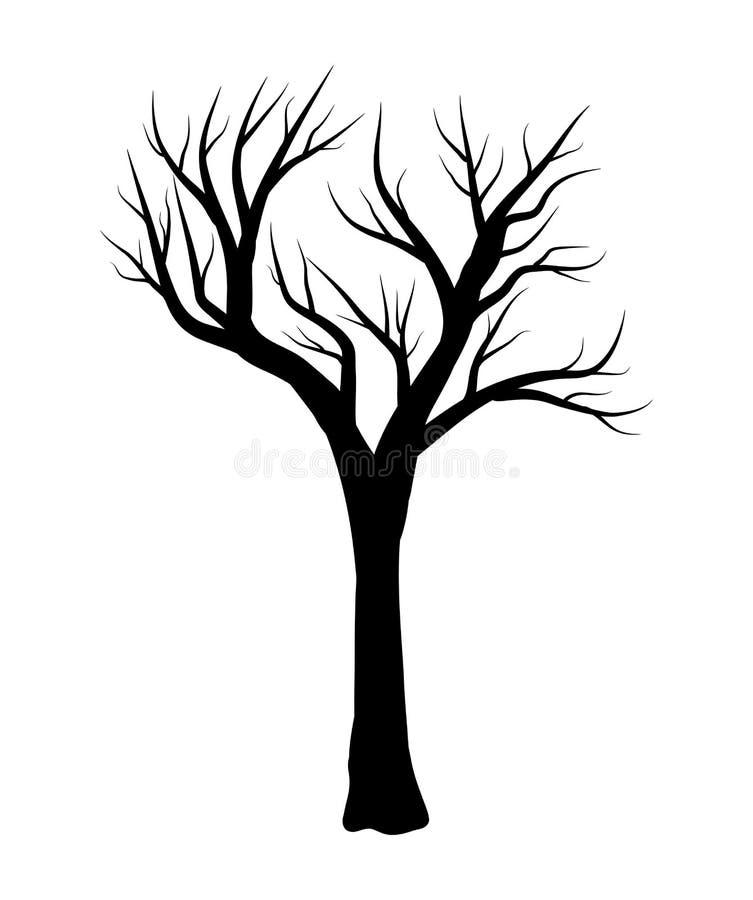 Progettazione nuda dell'icona di simbolo di vettore dell'albero royalty illustrazione gratis