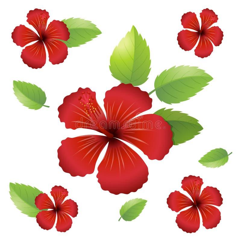 Progettazione senza cuciture del fondo con i fiori dell'ibisco royalty illustrazione gratis