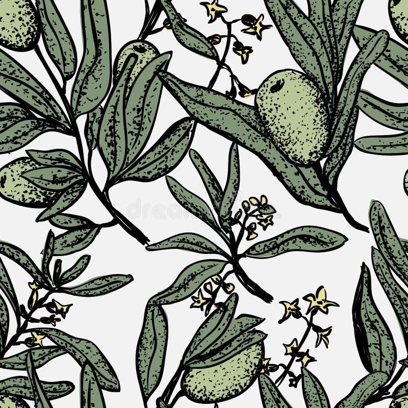 Progettazione senza cuciture verde oliva del modello su bianco illustrazione vettoriale