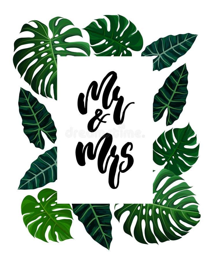 Progettazione tropicale con le foglie di palma esotiche illustrazione vettoriale