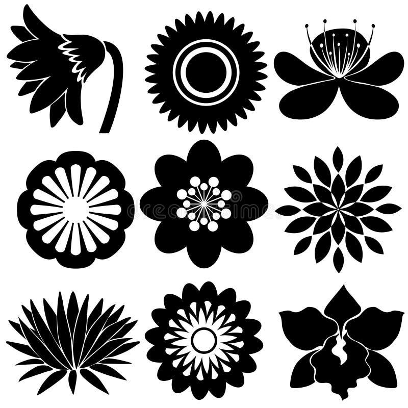 Progettazioni floreali nei colori neri illustrazione vettoriale