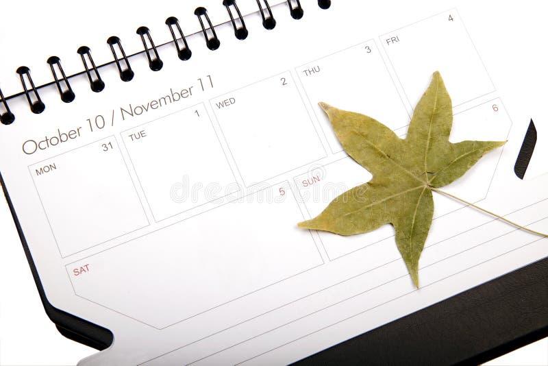Programma di autunno fotografia stock