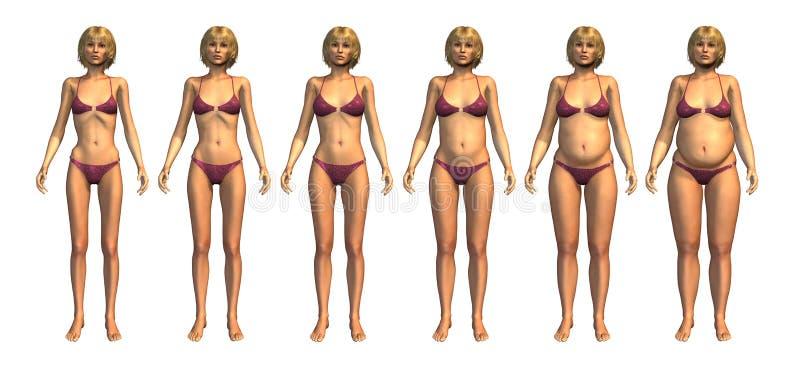 Progresión del peso: Peso insuficiente al exceso de peso ilustración del vector