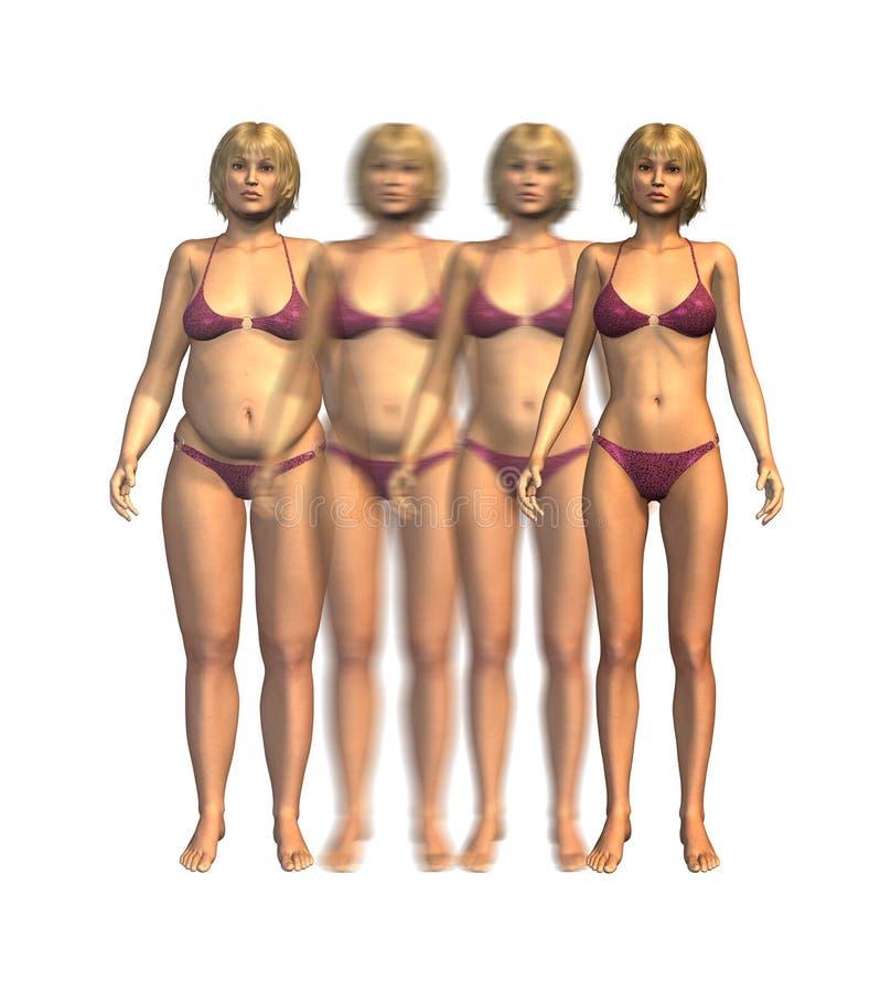 Progression de poids : Poids excessif à amincir illustration libre de droits