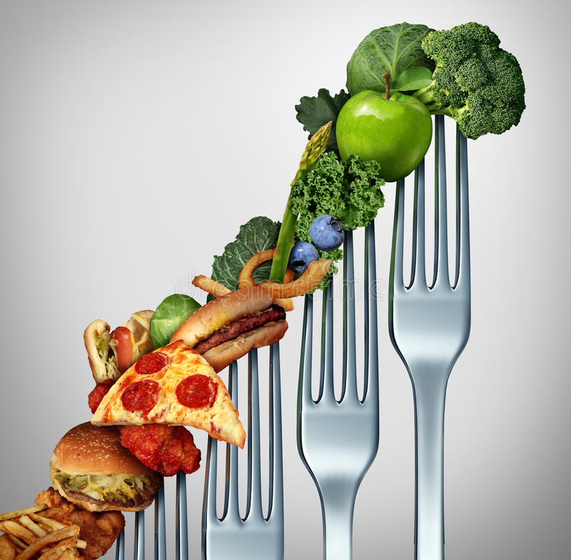 Progresso da dieta ilustração royalty free