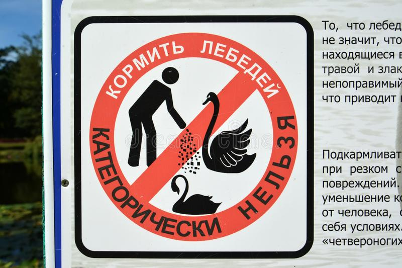 Prohibicja znak Kategoryczny ja jest niemożliwy karmić łabędź Zelenogradsk, Kaliningrad region Rosyjski tekst obrazy stock