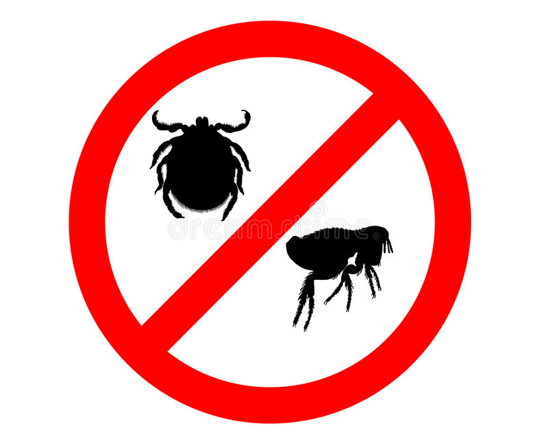 Prohibition sign for fleas and ticks. On white background stock illustration